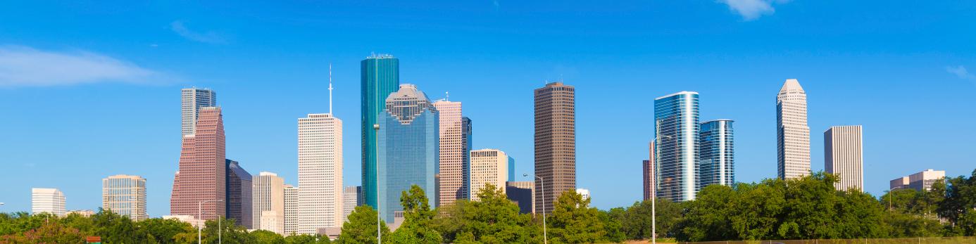Houston Panoramic