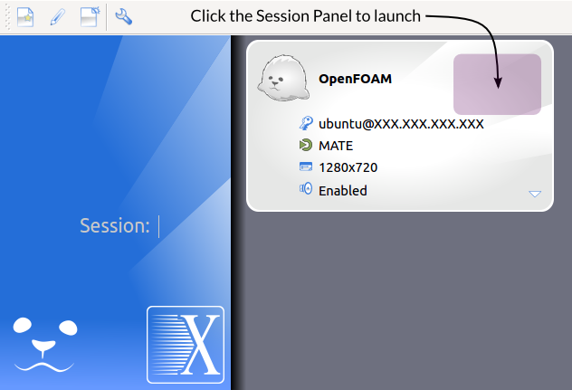 X2Go OpenFOAM Session Launcher